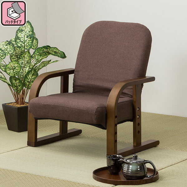 立ち座りラクラク高座椅子(ハープ2BR)