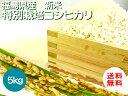 平成30年産新米 福島県産特別栽培米コシヒカリ 5kg