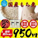 もち麦 国産 1kg (500g×2袋) まるっともちもち麦 (大麦) ライスアイランド ネコポス【日本全国送料無料】