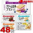 バランスアップクリーム玄米ブラン 48袋 ブルーベリー カカオ クリームチーズ メープル 豆乳カスタード