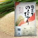 【送料無料!】新米!能登米 のとひかり(能登ひかり)10kg×2袋