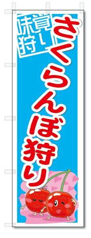 のぼり のぼり旗 さくらんぼ狩り (W600×H1800) 果物 サクランボ