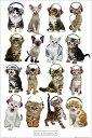 ポスター 610X915mm Keith Kimberlin Kittens Headphones 2177 猫 ヘッドフォン