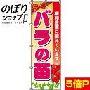 『バラの苗』 のぼり/のぼり旗 60cm×180cm 【薔薇の苗】