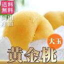 【送料無料】 黄金桃 大玉(約340g×5個)約1.7kg 岡山 産直 高級フルーツ 桃 もも ピー