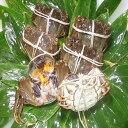 【本場中国産】上海蟹 メス 母 特売! 特大5匹セット @130g前後 贈答 ギフトにオススメ 蟹