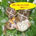 【本場中国産】上海蟹 メス 母 (中10匹満足セット!)90...