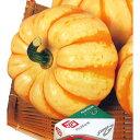 かぼちゃ プッチィーニ プッチーニ