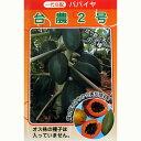 パパイヤ 種 【台農2号】 20ml(約200粒) ( 種 野菜 野菜種子 野菜種 )