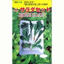【サラダセット】 小袋 ( 種 野菜 野菜種子 野菜種 ) ★