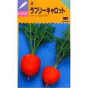 にんじん 種 【ラブリーキャロット】 小袋 ( 種 野菜 野菜種子 野菜種 )