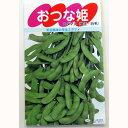 枝豆 種 【 おつな姫 】 種子 小袋(約1dl) ( 種 野菜 野菜種子 野菜種 )