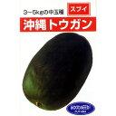 冬瓜 種 【 沖縄冬瓜 】 種子 小袋(約5ml) ( 種 野菜 野菜種子 野菜種 )