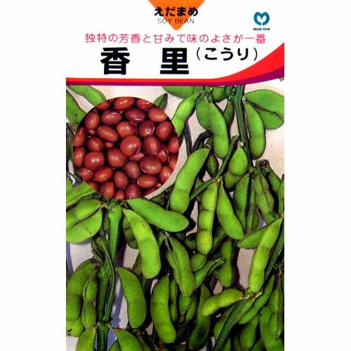 枝豆 種 【 香里 】 種子 小袋(約20ml) ( 種 野菜 野菜種子 野菜種 )