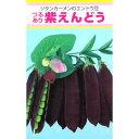 実取エンドウ 種 【紫えんどう】 20ml ( 種 野菜 野菜種子 野菜種 )