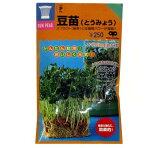 スプラウト種 もやし種 【 豆苗 (とうみょう) の種 小袋 約80ml 】 家庭菜園 ガーデニングにおすすめ♪