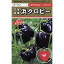 ピーマン 種 【浜クロピー】 1.5ml ( 種 野菜 野菜種子 野菜種 )