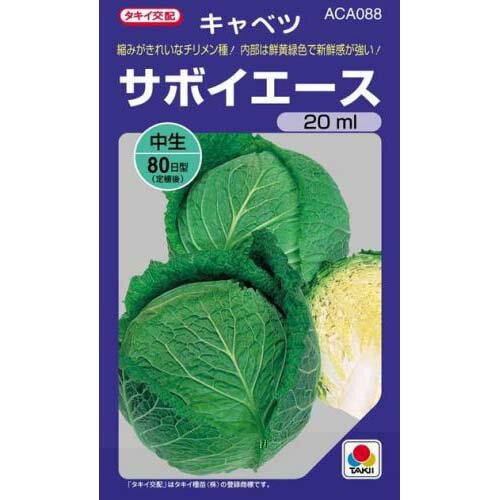 サボイエース(キャベツの種)20ml種子(野菜)販売
