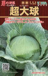 トキタの男の野菜シリーズ 超大球