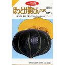 かぼちゃ 種 【ほっとけ栗たん】 14粒 ( 種 野菜 野菜種子 野菜種 )