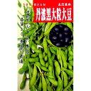 大豆 種 【 丹波黒大豆 】 種子 小袋 (約90粒)( 種 野菜 野菜種子 野菜種 )