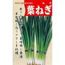 葉ねぎ (ネギの種) 15ml