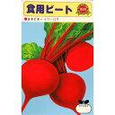 廿日大根 種 【食用ビート】 小袋(約40ml) ( 種 野菜 野菜種子 野菜種 ビーツ)