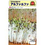 アルファルファ (スプラウト・もやしの種) 小袋 約40ml