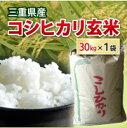 【 平成30年】【数量限定販売中】三重県産 コシヒカリ 玄米 二等米 30kg 【送料無料】