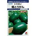 冬瓜 種 【 姫とうがん 】 種子 小袋(約10粒) ( 種 野菜 野菜種子 野菜種 )