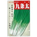 ネギ 種 【九条太】 1dl ( 種 野菜 野菜種子 野菜種 )