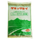緑肥・牧草 種 【 バミューダグラス 】 種子 1kg ( 種 野菜 野菜種子 野菜種 )
