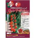 ミニトマト 種 【ロッソナポリタン】 100粒 ( 種 野菜 野菜種子 野菜種 )