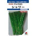アスパラガス 種 【 シャワー 】 種子 小袋(約1.4ml...