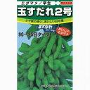 枝豆 種 【 玉すだれ2号 】 種子 小袋(約1dl) ( 種 野菜 野菜種子 野菜種 )