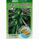 パパイヤ 種 【オキテング25号】 20ml(約200粒) ( 種 野菜 野菜種子 野菜種 )