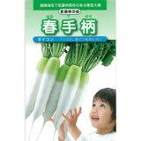 春手柄 (大根の種) 1dl缶 【野菜種子 販売】