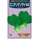 ちんげん菜 種 【 ミニチンゲンサイツィリン 】 種子 小袋(約3ml) ( 種 野菜 野菜種子 野菜種 )