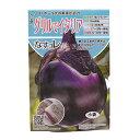 ナス 種 【 グリルでイタリア 】 小袋(20粒) ( 種 野菜 野菜種子 野菜種 )