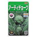 西洋野菜 種 【 アーティチョーク 】 実咲小袋 ( 種 野菜 野菜種子 野菜種 )