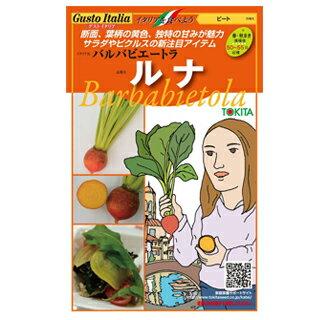 ビート 種 【 バルバビエートラ ルナ 】 80粒 ( 種 野菜 野菜種子 野菜種 )