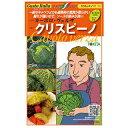 サボイキャベツ 種 【 クリスピーノ 】 小袋 ( 種 野菜 野菜種子 野菜種 )