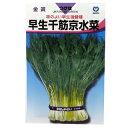 水菜 種 【 早生千筋京水菜 】 種子 小袋(約20ml) ( 種 野菜 野菜種子 野菜種 )