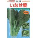 小松菜 種 【いなせ菜】 2dl ( 種 野菜 野菜種子 野菜種 )