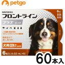 【10箱セット】犬用フロントラインプラスドッグXL 40kg〜60kg 6本(6ピペット)(動物用医薬品)【あす楽】