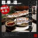 【送料無料】北海道十勝 広尾産 大型 新巻鮭 銀毛オス1本物(化粧箱入・真空包装)4kg前後ギフト