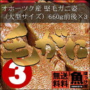 【送料無料】北海道 オホーツク産 堅毛ガニ姿(大型サイズ)660g前後×3杯【10P03Dec16】
