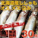 【送料無料】北海道(広尾産)ししゃも オス メス 込み 30...