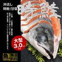 【送料無料】ロシア産 沖流し 時鮭(甘塩) 大型3キロ以上 ...