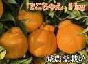 こだわりでこちゃん5kg【減農薬栽培】元祖